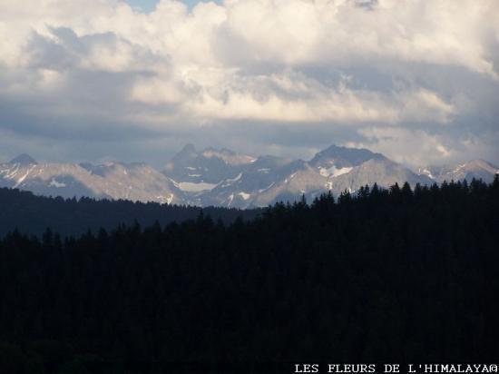 Montagnes avant l'orage